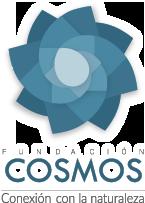 Fundacion-Cosmos-Logo-1