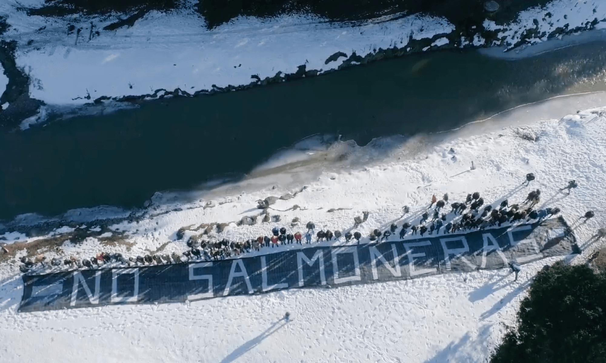 CP Ley Salmoneras Tierra del Fuego